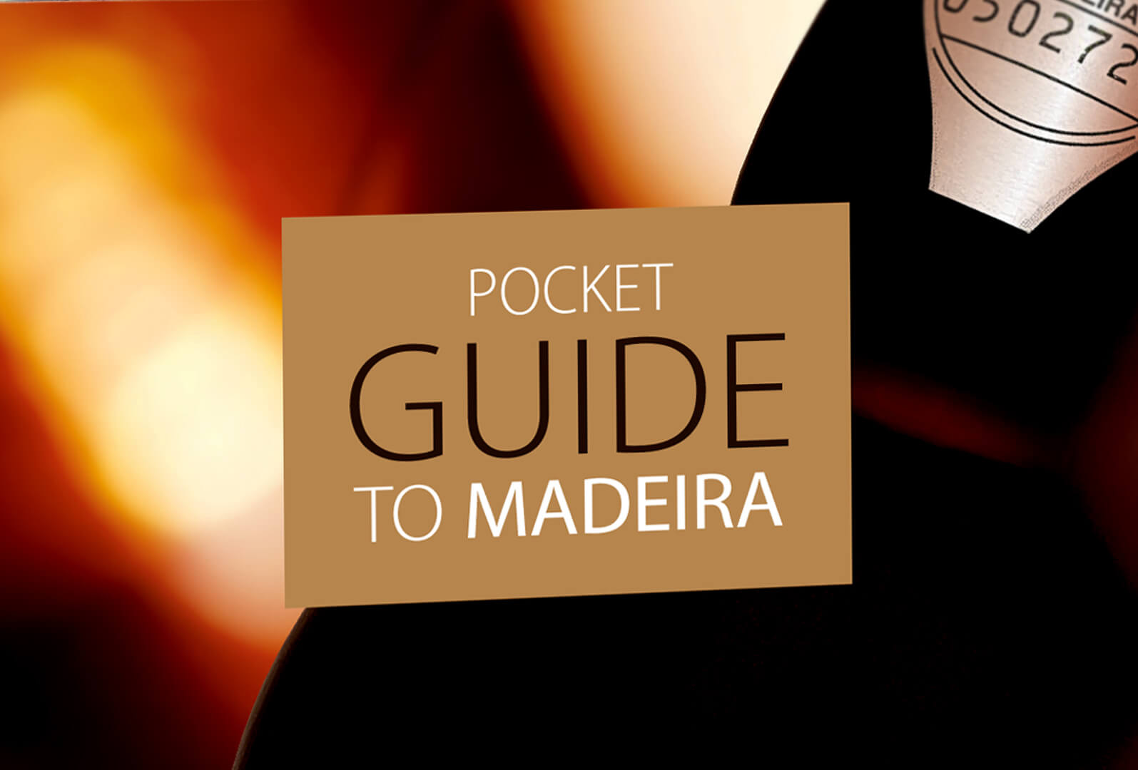 P1_Pocket Guide Blandy's